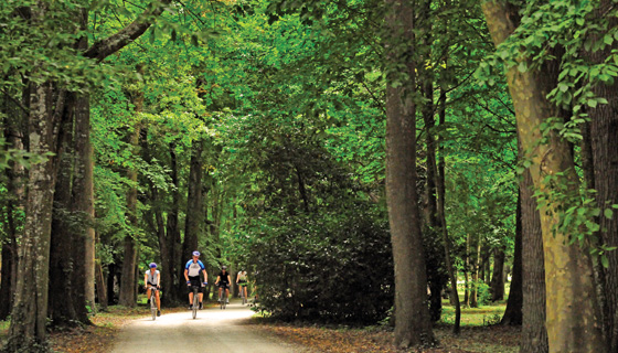 Loire Valley Family Biking Tour